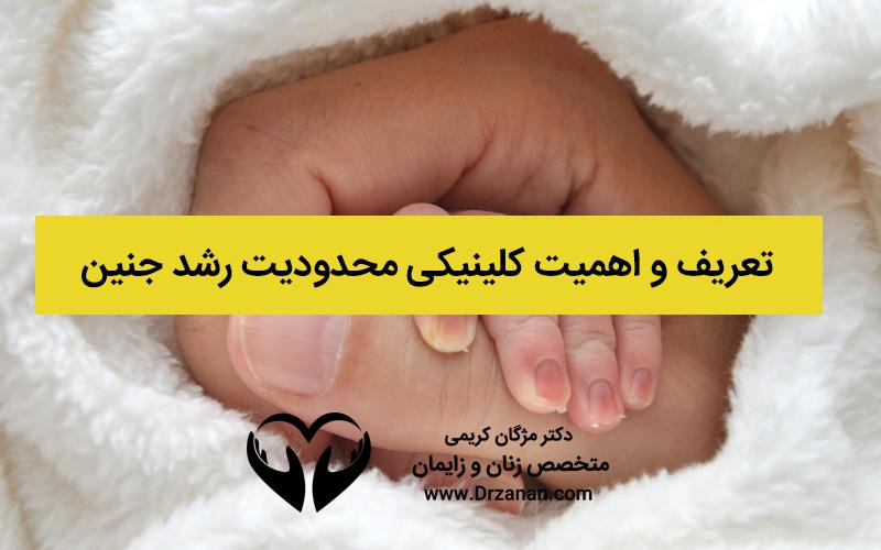 تعریف و اهمیت کلینیکی محدودیت رشد جنین که بهتر است بدانید